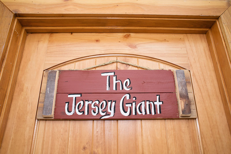 Room Jersey Giant 1