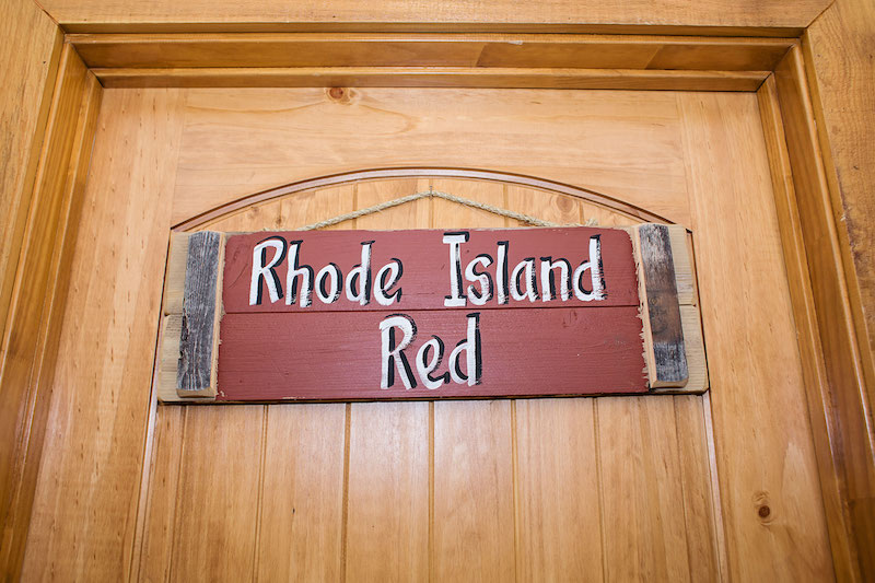 Room Rhode Island Red1